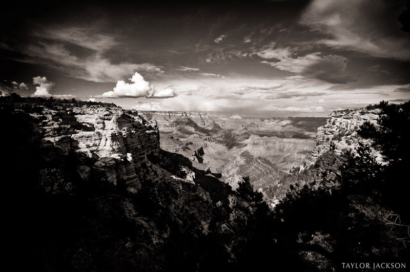 grand canyon arizona black and white south rim