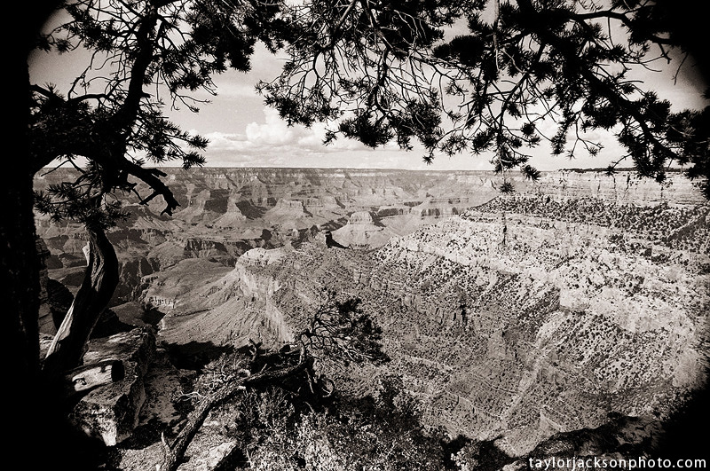 35mm BW film Grand Canyon