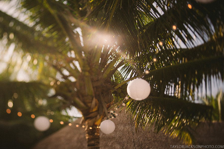 palm-tree-wedding-decoration