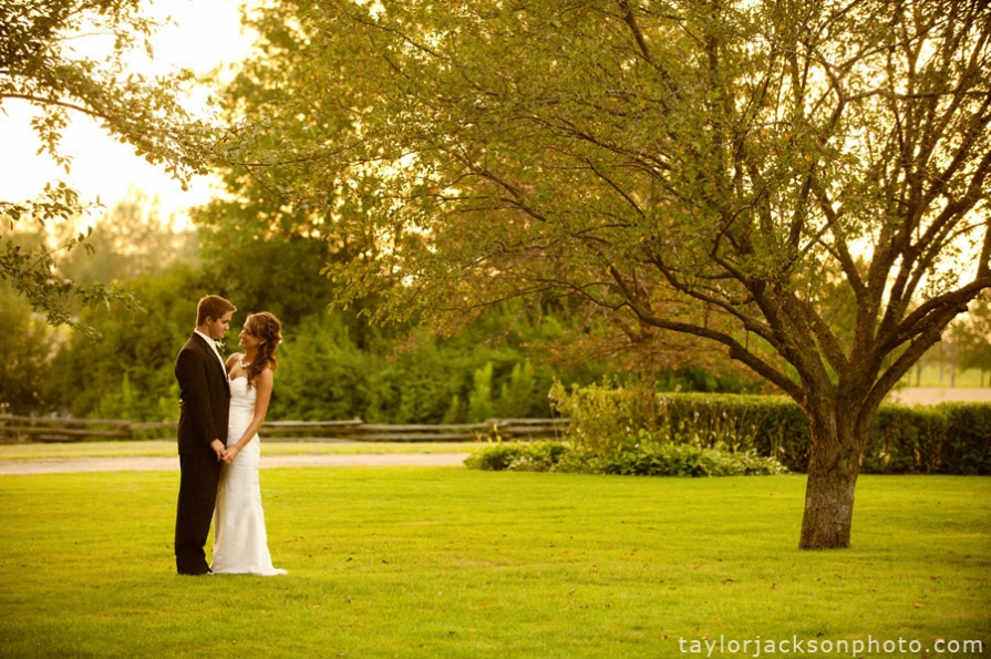 weddings at ashgrove farms
